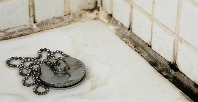 Schimmel in de badkamer: oorzaak, gevolg en behandeling