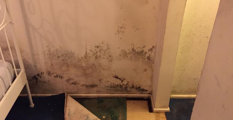 Vochtige slaapkamer: hoe schimmel verwijderen?